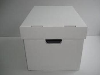Arhivska kutija